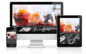 responsive-website-design-everything-you-need-to-know-about-responsive-design4_mini